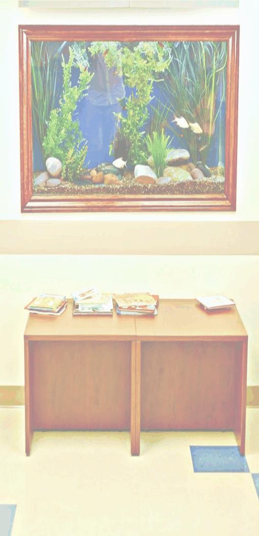 Freshwater tank cleaning,saltwater design,reef aquarium